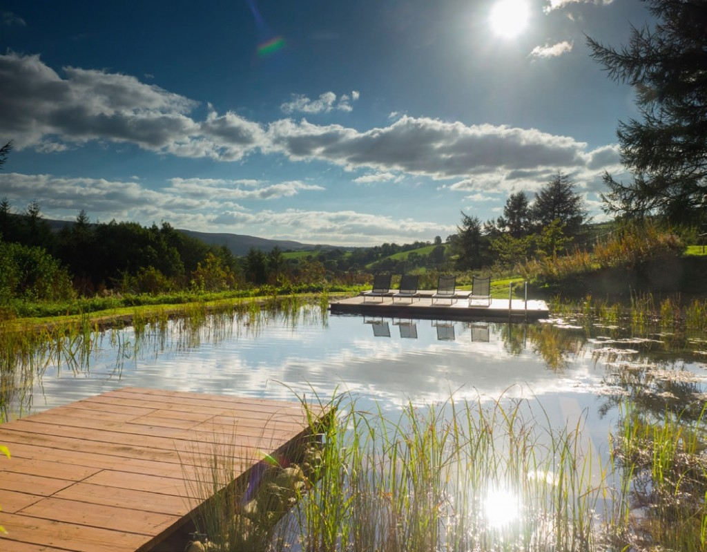 A secluded natural pool in the forest has won a major International Award for its designers, Poolscape. Pic: Ian Thwaites.