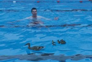 Portishead lido hits headlines - Open air swimming pool portishead ...